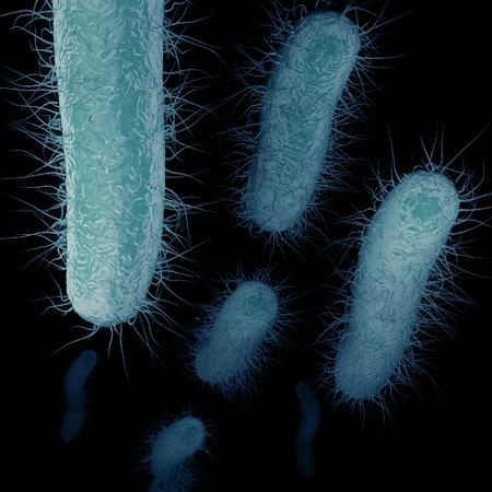 Die superbug, bekannt als Carbapenem-Resistant Enterobacteriaceae (CRE), ist eine Art von Antibiotika-resistenten Bakterien. Die Abbildung zeigt die Bakterien durch den Blutstrom mit Geißeln (tenticales) bewegt. Standard-Bild - 43140956