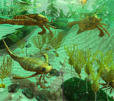 An illustation depicting life in a Devonian Period sea (419 to 358 million years ago). Shown are: Trilobites, Euryptids, Blastoids, Crinoids, Caryocrinites and Graptolite Dictyonema retiforme.