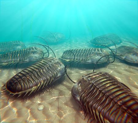 三葉虫は、古生代の暖かい海の底の上に移動の図。