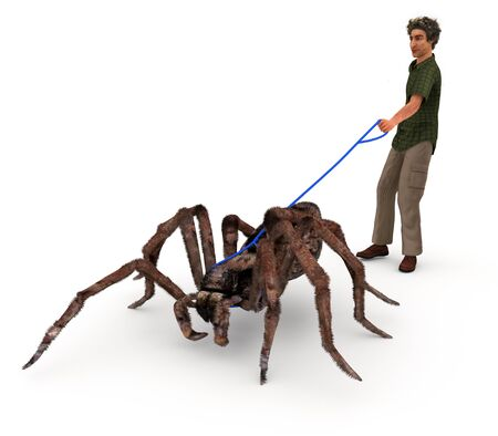 satire: A satirical illustration depicting a man walking a giant wolf spider in that same matter as people walk their dogs.