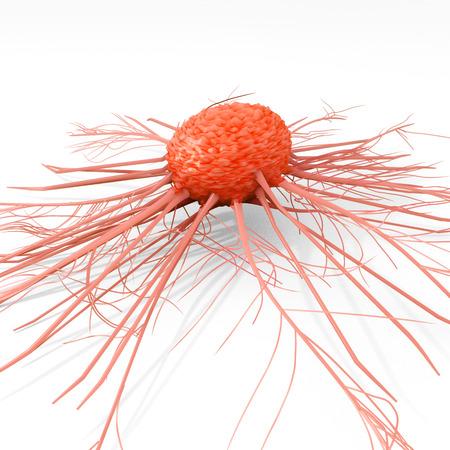 白い背景の上の癌細胞図 写真素材