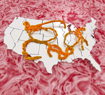 centers: An illustration related to the ebola virus and the initial infections within the United States. Stock Photo