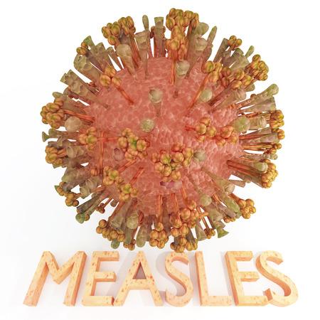 Eine Masern Virus Abbildung mit Text Name Haut sores.The Bild mit strukturierten stellt die Lipidmembran ikosaedrischen Körper des Virus Hämagglutinin H-Protein und Fusion F-Protein Vorsprünge. Standard-Bild - 43355072