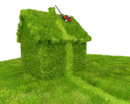 잔디 관리 및 재산 방치에 대한 기발한 그림 : 잔디를 깎고. 이미지는 지붕에 여전히 잔디 깎는 기계로 깎고 잔디와 버려진 시도와 이상 성장 집을 묘사 스톡 콘텐츠