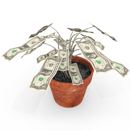 us paper currency: Growing Your Wealth - An illustration related to growing wealth with a depiction of a potted money plant.