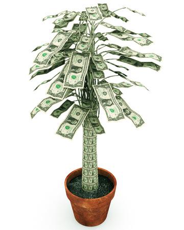 """feuille arbre: Money Tree Une illustration liée à la croissance de la richesse ou de la phrase sur la frugalité """"l'argent ne pousse pas sur les arbres» comme une représentation d'un arbre d'argent en pot. Banque d'images"""