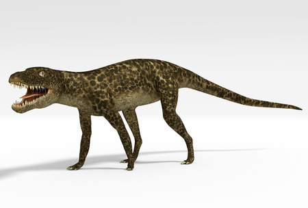 An illustration of Hesperosuchus, an extinct genus of crocodylomorph reptile that contains a single species, Hesperosuchus agilis. Remains of this sphenosuchian have been found in Late Triassic Carnian strata from Arizona and New Mexico.