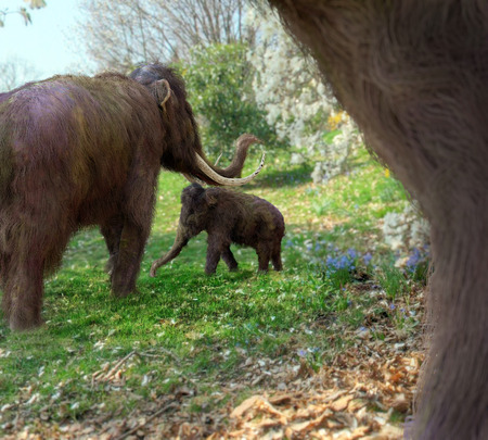 An illustration focused on a baby woolly mammoth surrounded by her parents set in a flowering meadow.