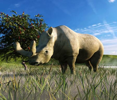 Eine Illustration zeigt Brontotherium in einer Wiese. Brontotherium sind eine ausgestorbene Gruppe Nashorn-basierende Browser mit Pferden. Es war endemisch nach Nordamerika während der späten Eozän Standard-Bild - 48741621