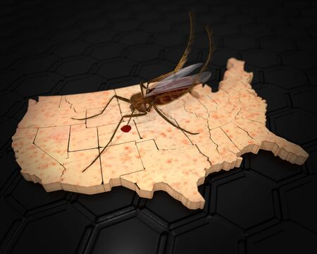 An illustration related to the outbreak of the Zika Virus in the US with a mosquito on a US map with skin rash texture.  Symptoms of Zika Virus include mild headaches, maculopapular rash, fever, malaise, conjunctivitis, and arthralgia.