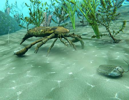 Eine Abbildung der Eurypterus (Sea Scorpion) (vor 300.000.000 Jahre) eine Trilobite in einer Unterwasser-Szene aus dem Ordovizium jagen Standard-Bild - 56226464