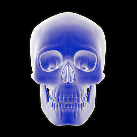 A 3-D illustration of a front view of a human skull on black background.