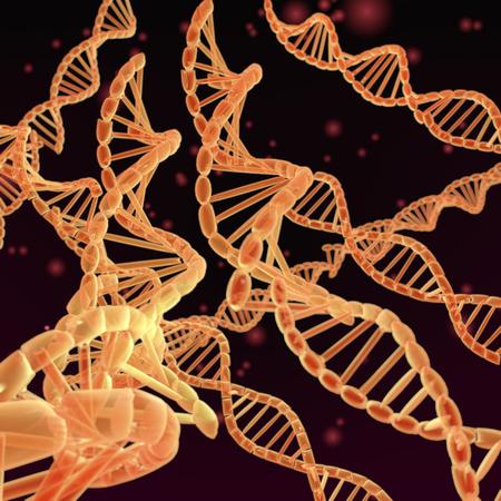 Eine 3-D-Darstellung, die DNA-Helixe auf dunkelrotem Hintergrund darstellt. Standard-Bild - 69865453