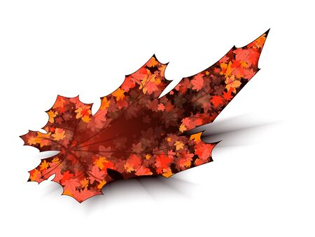 Maple leaf on a white background with shadow