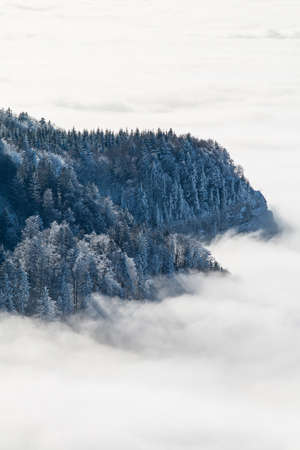 sea of clouds in the mountains 스톡 콘텐츠