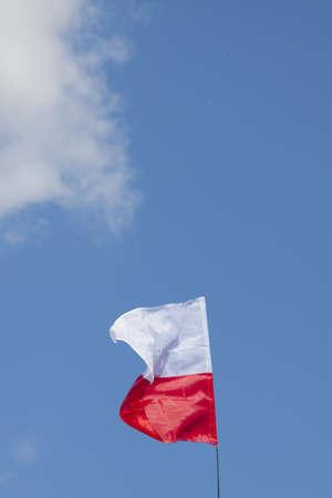 bandera de polonia: Single Polish flag flyung against blue sky, sunlit Foto de archivo