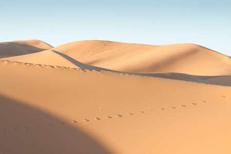 Erg Chebbi dunes at Sahara desert, Morocco, sunlit at sunrise