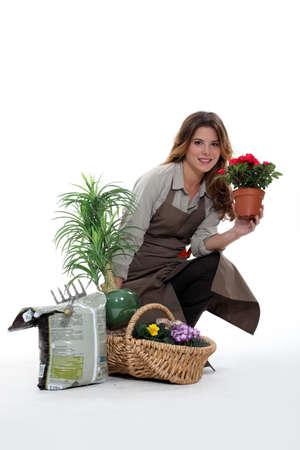 vestal: female florist with flowers Stock Photo