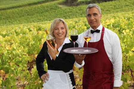 Wine tasting in a vineyard photo