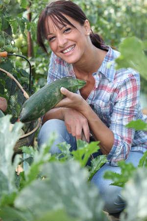 healthfulness: Woman picking cucumber