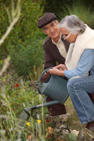 Elderly couple watering flowers photo
