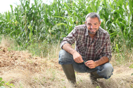 Farmer kneeling by crops photo