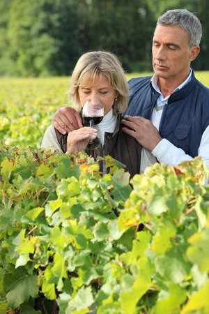 Couple tasting wine in a vineyard photo