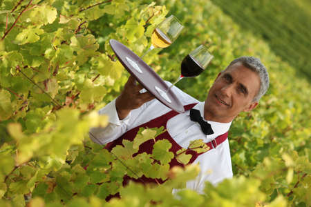 45 49 years: Waiter serving glasses of wine in a vineyard