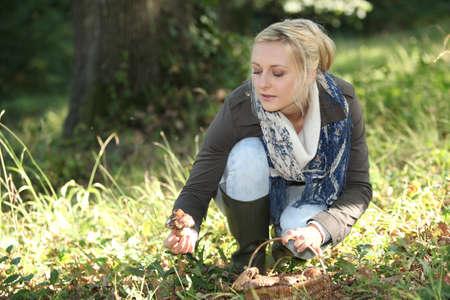 mushroom picking: A woman mushroom picking.