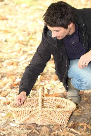 earth nut: Man gathering chestnuts
