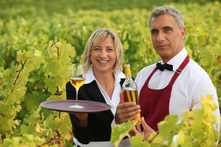 Wine growers on their crops photo