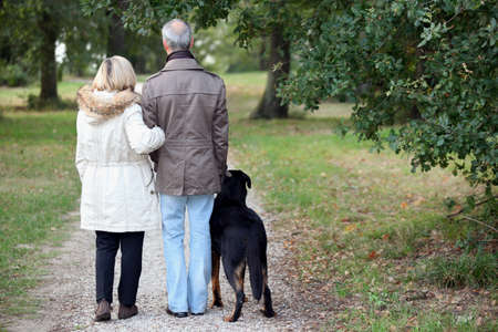 60 64 years: Older couple walking a dog Stock Photo