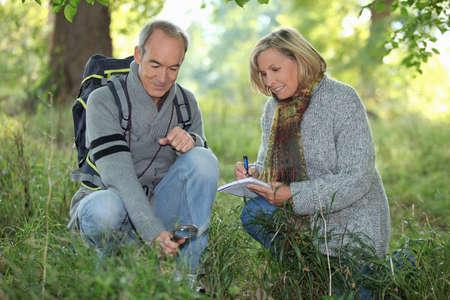 parejas caminando: pareja de ancianos caminando en el bosque