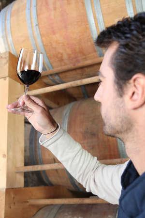 winemaking: Winegrower observing