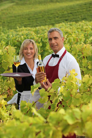 steward: Man and woman serving white wine in a vineyard