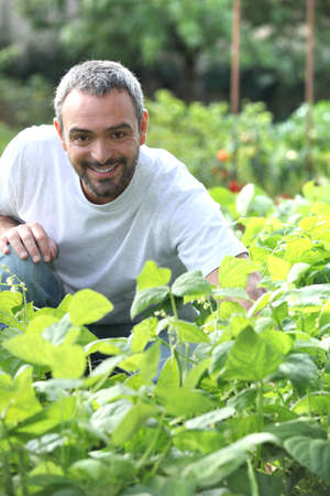 greying: Man in his garden Stock Photo