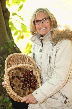 senior woman gathering chestnuts Stock Photo - 11613358