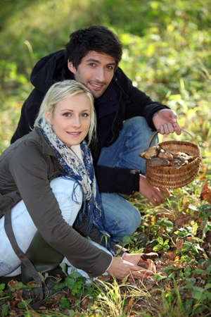 Couple gathering mushrooms Stock Photo - 11757221
