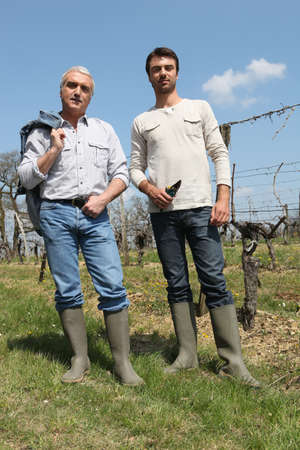 wine grower: Wine producers checking vines