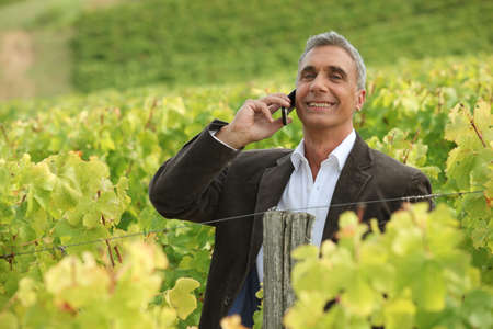 A mature man over the phone in a vineyard. photo