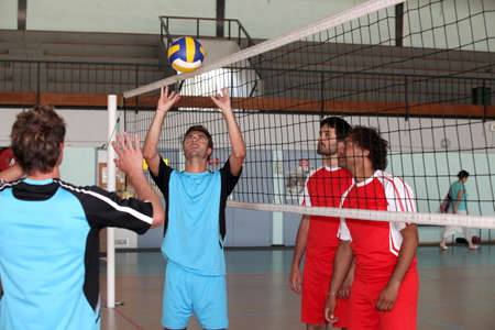 volley-ball players Stock Photo - 11795713
