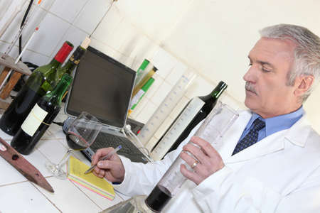 50 55: Oenologist testing a wine Stock Photo