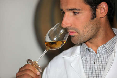 wine tasting: A man smelling wine