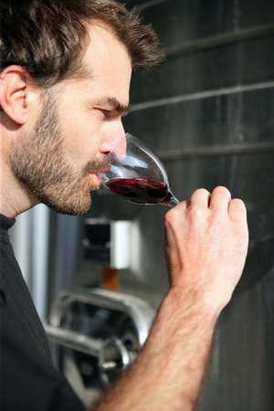 Man wine tasting Stock Photo - 11830492