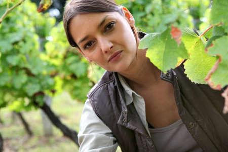 Woman in a vineyard photo