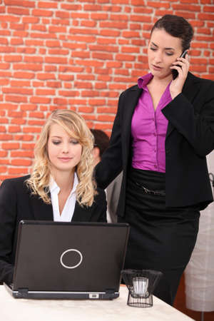 Female execs using a laptop in a restaurant Stock Photo - 11913484