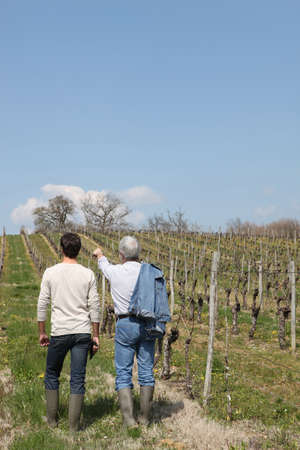 agriculturalist: Two men in vineyard Stock Photo