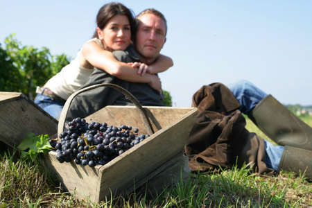 Couple hand picking grapes photo