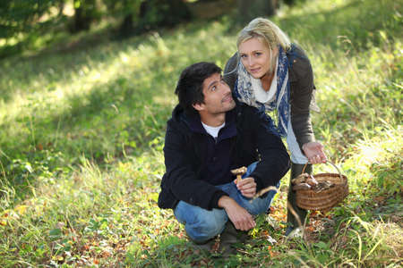 Couple picking mushrooms in a field photo