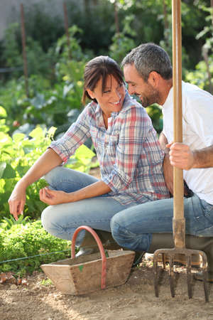 accomplices: Smiling lovers doing gardening Stock Photo
